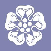 129_softseries-1_v2.png